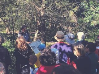 Kelly's Bush Walk & Talk