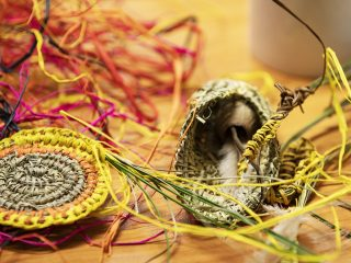 Fan weaving workshop with  Karleen Green